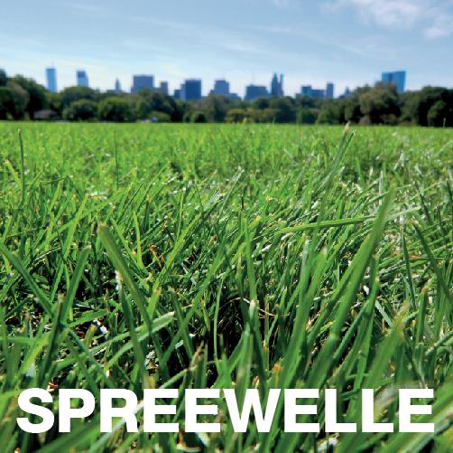 Spreewelle76-Cover