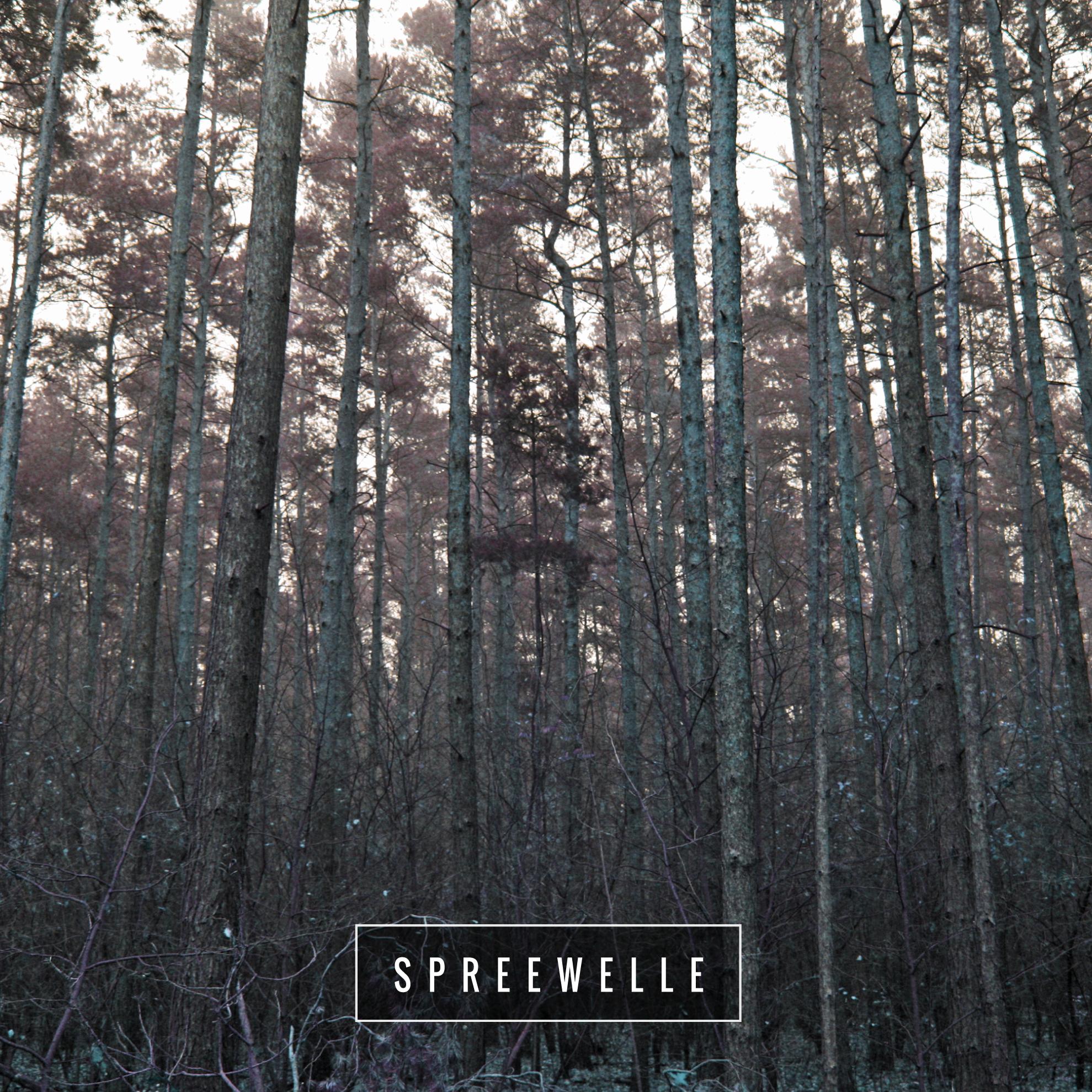 Spreewelle1134-01