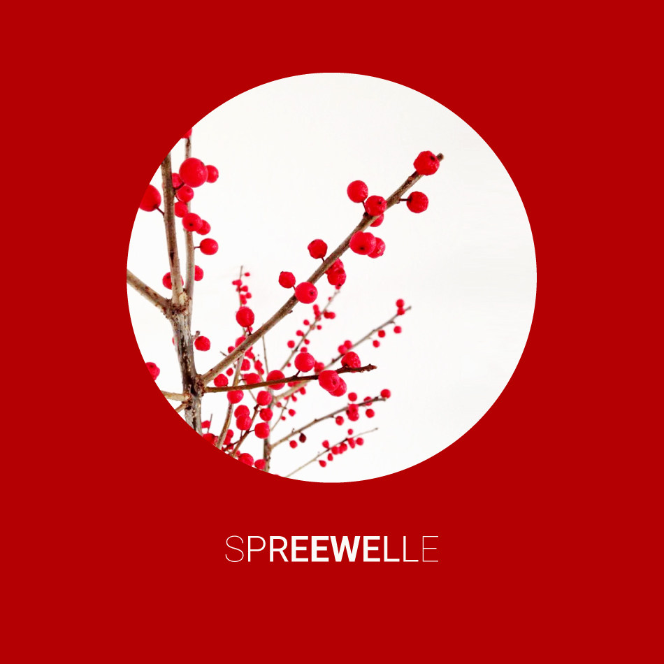 Spreewelle141-smally
