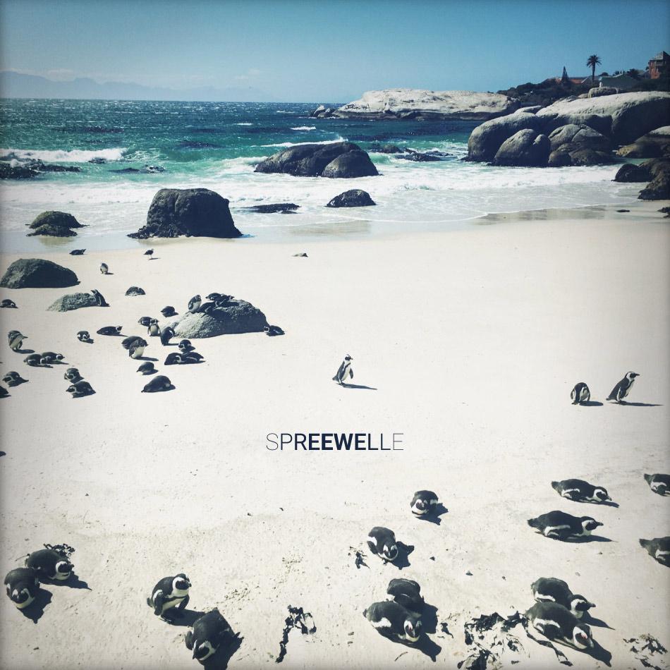 Spreewelle142-web